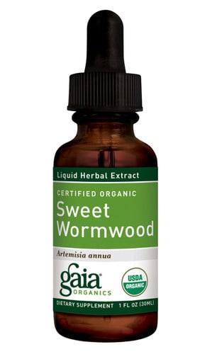 Sweet Wormwood 1oz by Gaia Herbs