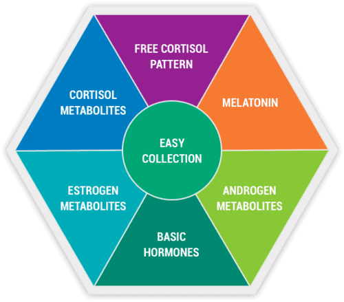 DUTCH Comprehensive Adrenal Analysis urine