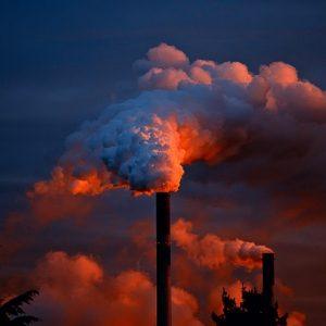 Environmental Pollutants Panel