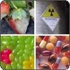 Food Allergy Chemical Sensitivity Mold Intolerance Test